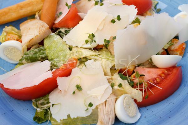 свежие Салат куриные овощей сыра синий Сток-фото © fogen