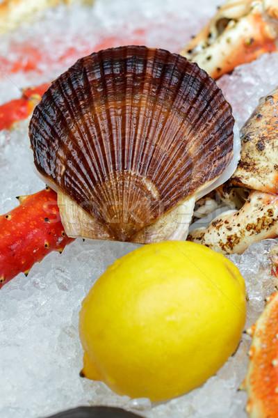 Сток-фото: лоток · тип · морепродуктов · льда · рыбы · рынке