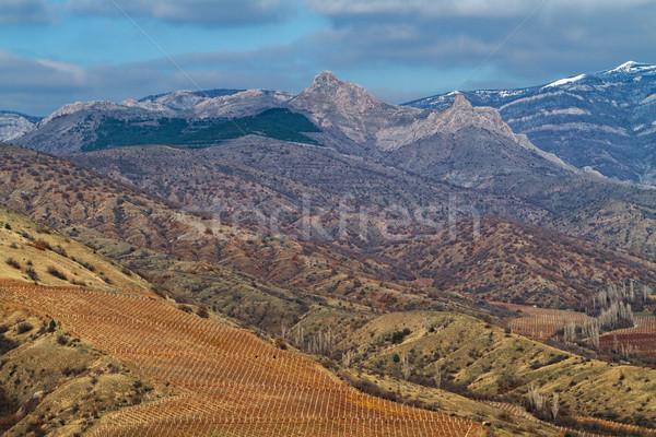 Najaar vallei wijngaard bergen hemel gras Stockfoto © fogen