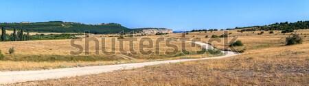 Weg afstand rotsen blauwe hemel gras natuur Stockfoto © fogen