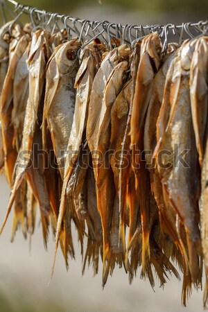 dried fish on a rope Stock photo © fogen