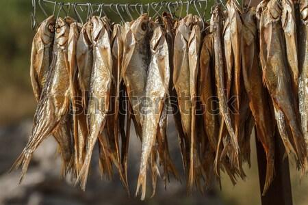 Kurutulmuş balık halat asılı Stok fotoğraf © fogen