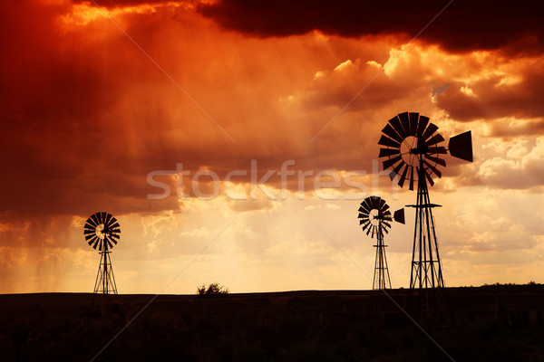 Rain in the dessert at sunset Stock photo © Forgiss