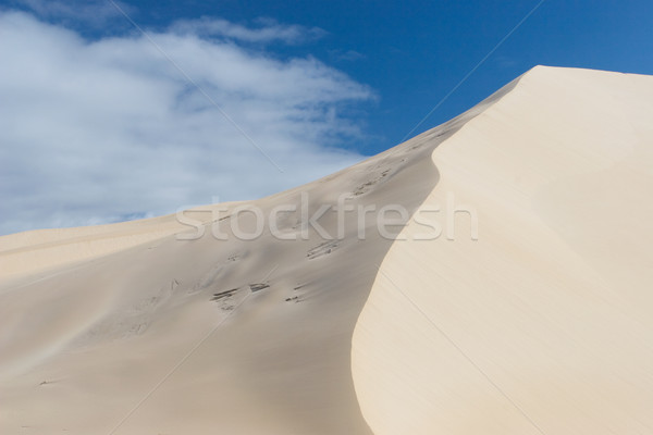 Rzeki piasku tekstury pustyni tekstury fali Zdjęcia stock © Forgiss