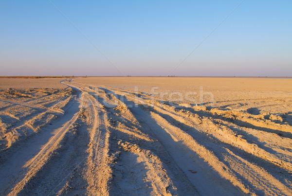Makgadikgadi Pan Stock photo © Forgiss