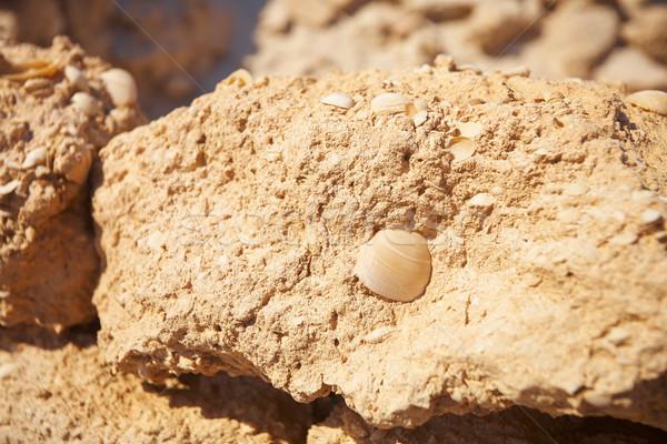 Stockfoto: Ruines · woestijn · origineel · handel · post · weinig