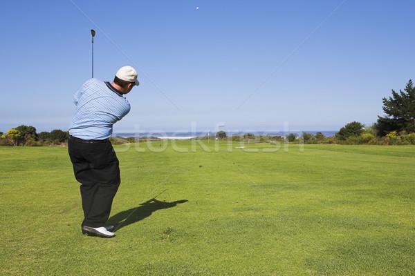 Golf 20 homme jouer vert détendre Photo stock © Forgiss