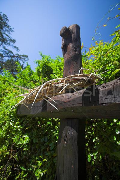 Coroa atravessar páscoa cristão religião Foto stock © Forgiss