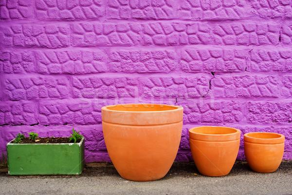 Colorato viola muro vernice verde colore Foto d'archivio © Forgiss