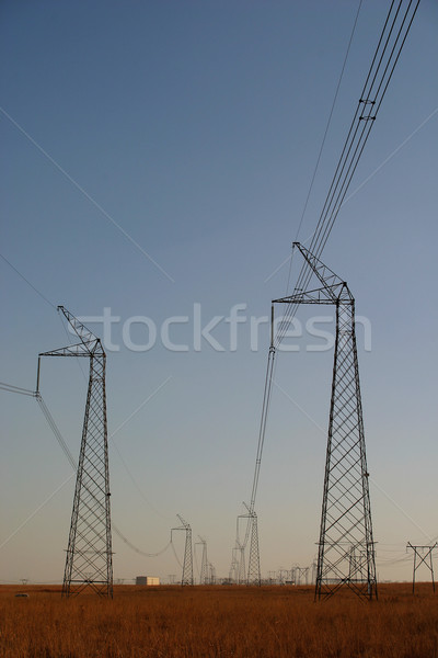Stock photo: Powercables #4