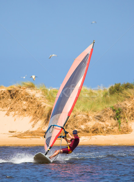 Fast moving windsurfer on the water Stock photo © Forgiss
