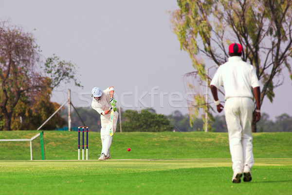 Cricket player hitting ball Stock photo © Forgiss