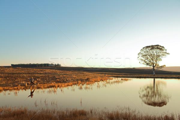 Flyfishing #27 Stock photo © Forgiss