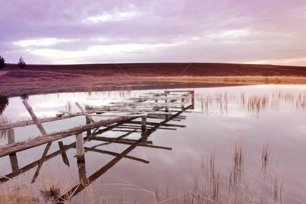 Paisagem peixe nascer do sol lago rio planta Foto stock © Forgiss