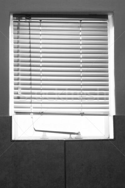 shielded window Stock photo © Forgiss