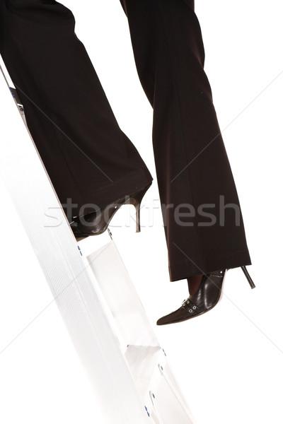 Ladder to success Stock photo © Forgiss