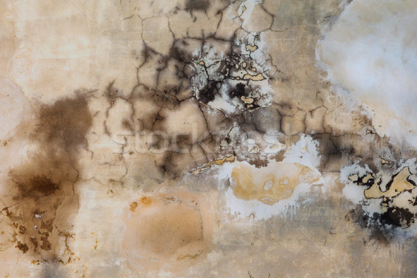 Grunge Wall Texture Stock photo © Forgiss