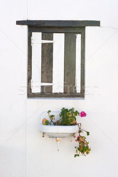 Fenêtre rose floraison usine bois Photo stock © Forgiss