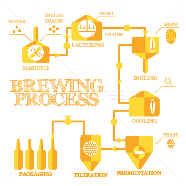 Brewery process infographics Stock photo © Fosin