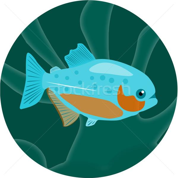 水族館 魚 ピラニア 詳しい eps ストックフォト © Fosin