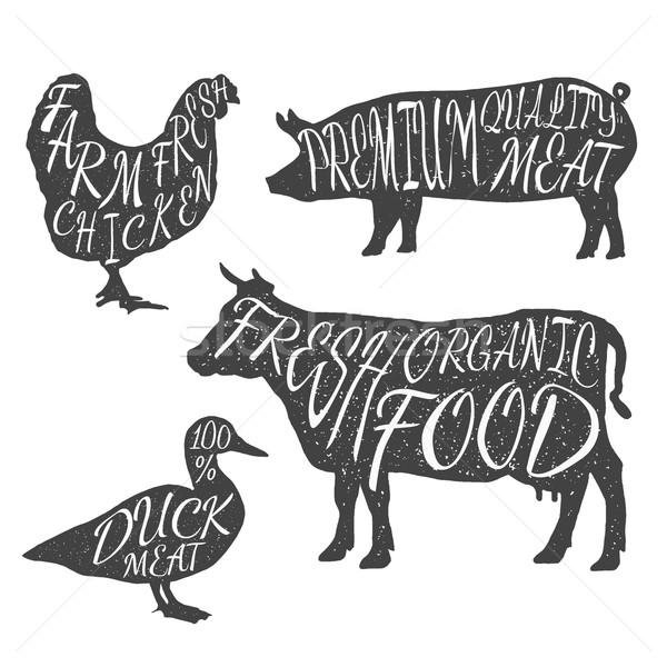 çiftlik hayvanları tavuk inek ördek domuz Stok fotoğraf © Fosin