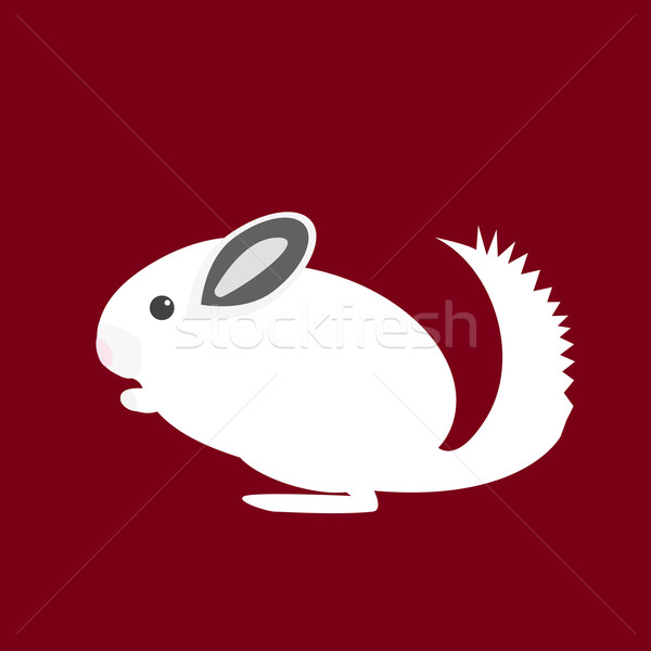 Chinchilla animal icône style design lapin Photo stock © Fosin