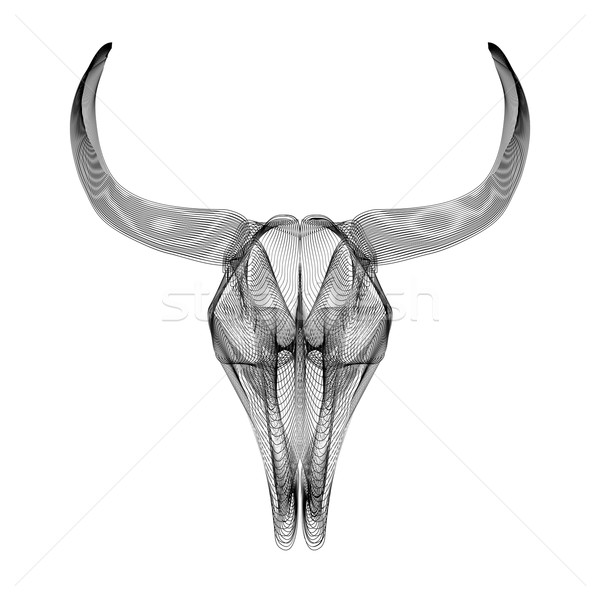 Bull skull. 3d style vector illustration for prints or t-shirt. Stock photo © Fosin