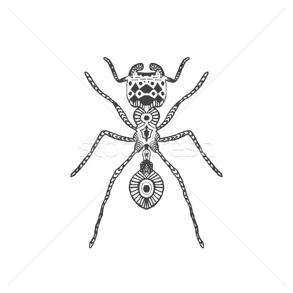 Stylisé fourmi animaux ensemble dessinés à la main doodle Photo stock © Fosin