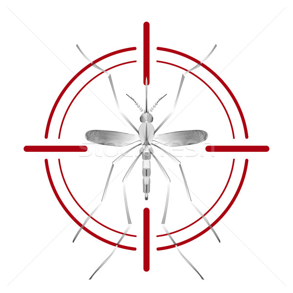 Fever mosquito species aedes aegyti in red aim isolated on white background Stock photo © Fosin