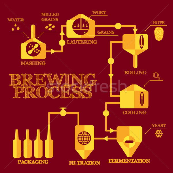 Stock photo: Brewery process infographics