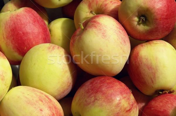 apples Stock photo © Fotaw