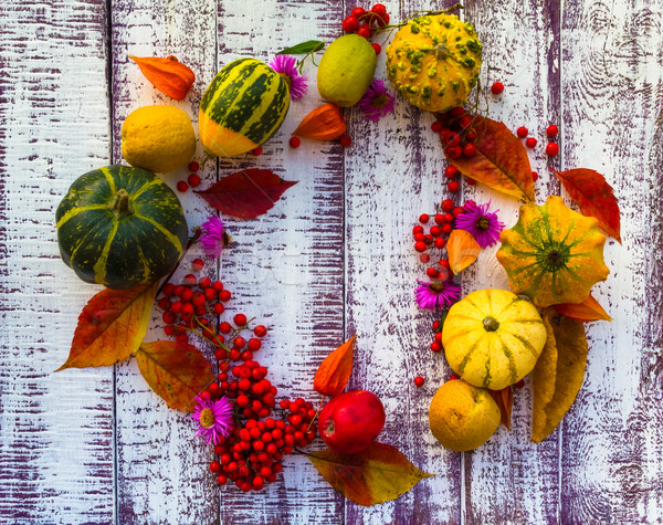 Automne automne table légumes fruits table en bois Photo stock © fotoaloja