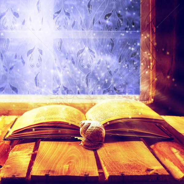 открытых старые книги магия улитки бумаги весны Сток-фото © fotoaloja