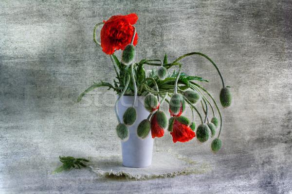 Still Life bouquet red poppies Stock photo © fotoaloja