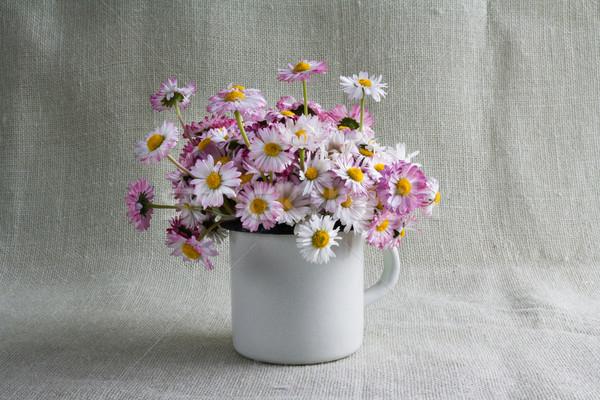 Still life bouquet daisies Stock photo © fotoaloja