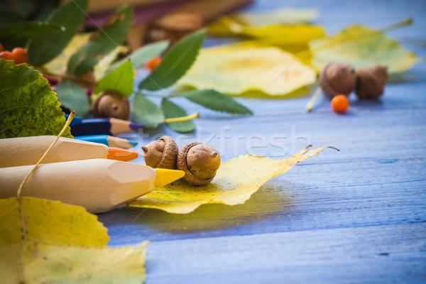 осень назад школы Снова в школу природы карандашом Сток-фото © fotoaloja