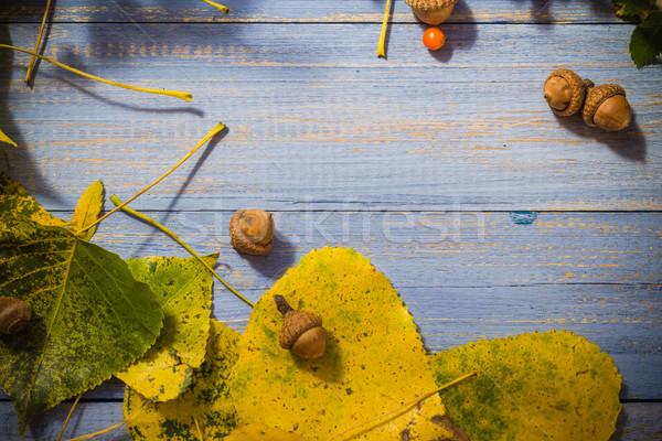 紅葉 果物 青 表 自然 葉 ストックフォト © fotoaloja