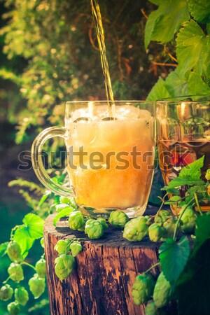 пива хмель лист Бар пить Сток-фото © fotoaloja