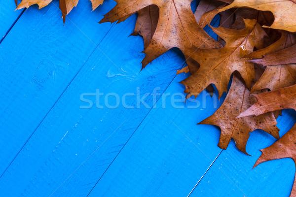 Düşmek yaprakları mavi ahşap dizayn yaprak Stok fotoğraf © fotoaloja