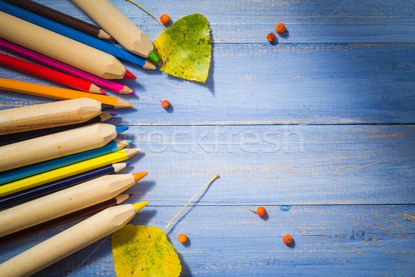 Vintage colorato matite autunno frutti blu Foto d'archivio © fotoaloja