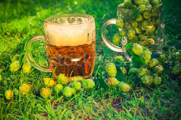 Completo salto cerveja dois folha bar Foto stock © fotoaloja
