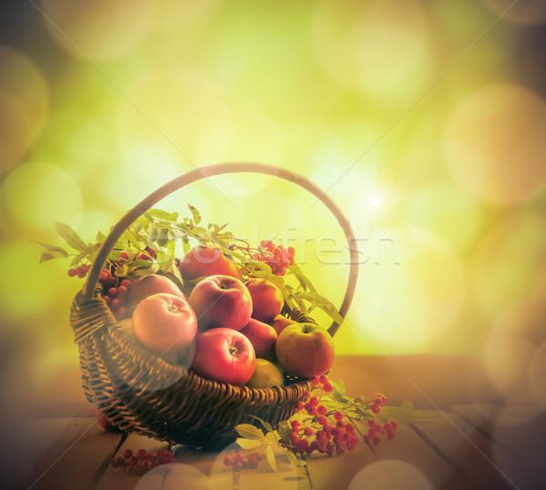 A basket full apples rowan sunset Stock photo © fotoaloja