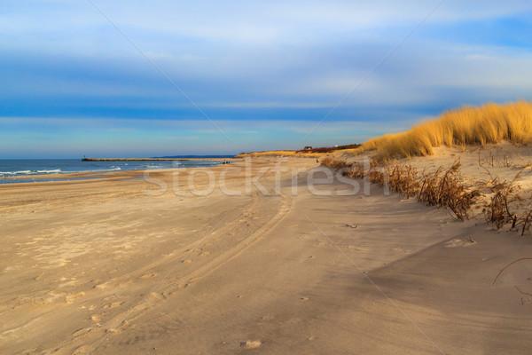 çim kapalı baltık denizi arka plan okyanus uzay Stok fotoğraf © fotoaloja