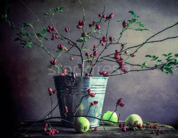 Ancora vita rami mele fiore natura frutta Foto d'archivio © fotoaloja