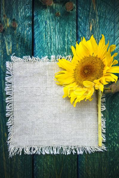 Art background summer floral flower vintage sunflower Stock photo © fotoaloja