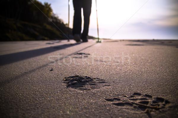 Nordic walking sport run walk motion blur outdoor person legs st Stock photo © fotoaloja