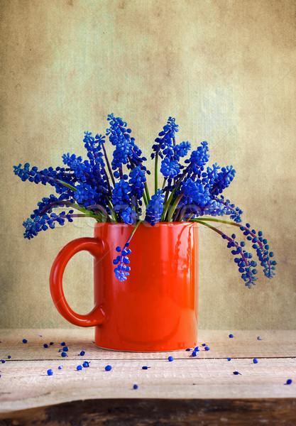 Still life bouquet spring flowers blue Stock photo © fotoaloja