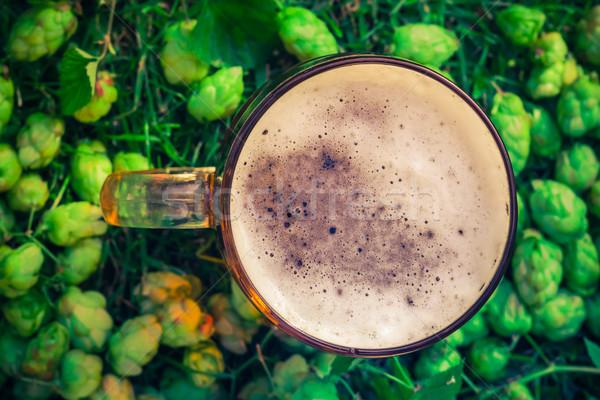 Topo ver quartilho cerveja salto luz Foto stock © fotoaloja