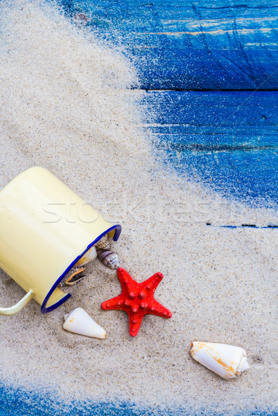 Coloré obus tasse sable bleu plage Photo stock © fotoaloja