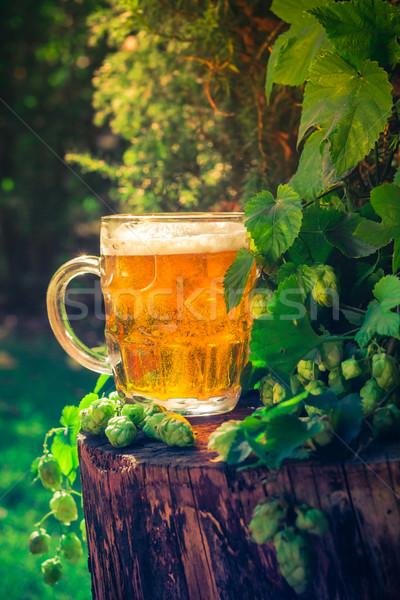 Pinte or bière bois feuille bar Photo stock © fotoaloja